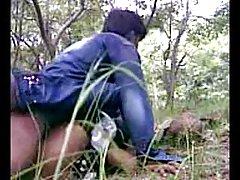 هند دیدن انلاین فیلم سوپر انجمن جنگل